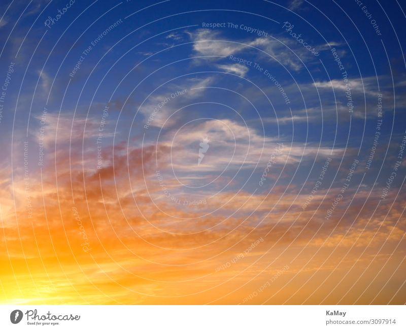 Brennender Himmel Natur nur Himmel Wolken Sonnenaufgang Sonnenuntergang Sonnenlicht Wetter leuchten außergewöhnlich blau gelb gold orange rot Stimmung
