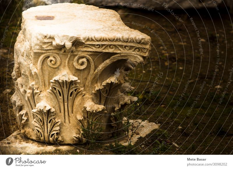 """Nahaufnahme eines Säulenkopfes im korinthischen Stil auf dem Boden. Kunst Architektur Erde Farn """"Iznik Türkei"""" Nikea Asien Ruine Erdbeben"""
