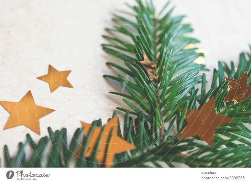 weihnachtliches dekozeugs Weihnachten & Advent Tannenzweig Tannennadel Stern (Symbol) Sterne Weihnachtsdekoration Dekoration & Verzierung Postkarte