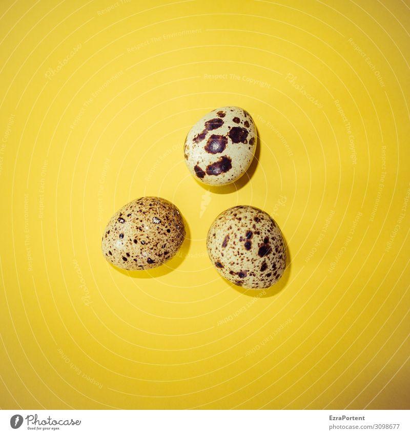 EiEiEi Lebensmittel Ernährung Bioprodukte klein braun gelb Beginn Wachtelei 3 zerbrechlich Farbfoto Innenaufnahme Menschenleer