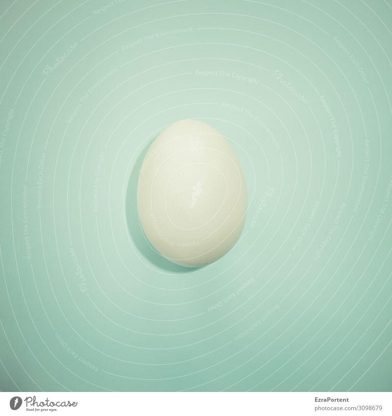 Ei (weiß) blau Gesundheit Lebensmittel Ernährung hell frisch Bioprodukte Haushuhn Entwicklung