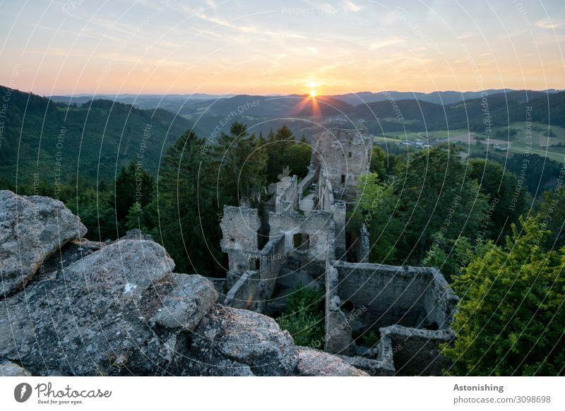 Ruine in letzter Sekunde Umwelt Natur Landschaft Luft Himmel Horizont Sonne Sonnenaufgang Sonnenuntergang Sonnenlicht Sommer Wetter Schönes Wetter Pflanze Baum