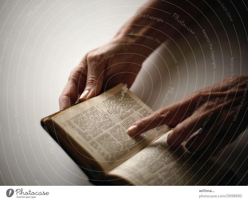 Finger einer Hand ruht auf einer Textstelle der Bibel lesen Buch Geschichte Heilige Schrift Zeigefinger Gott Glaube & Religion Kapitel Hände weiblich