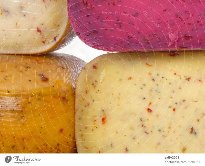 Alles Käse... Lebensmittel Ernährung fest mehrfarbig genießen Verschiedenheit Marktstand Markttag Käsemarkt Käselaib Kräuter & Gewürze reif lecker Farbfoto