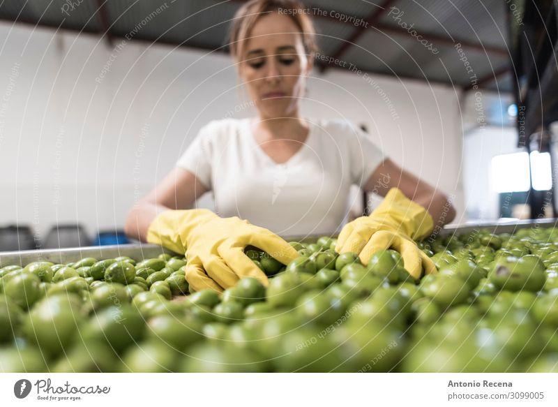 Olivenarbeiter Frucht Arbeit & Erwerbstätigkeit Beruf Arbeitsplatz Fabrik Industrie Business Unternehmen Mensch Frau Erwachsene Arme Fahrzeug Container
