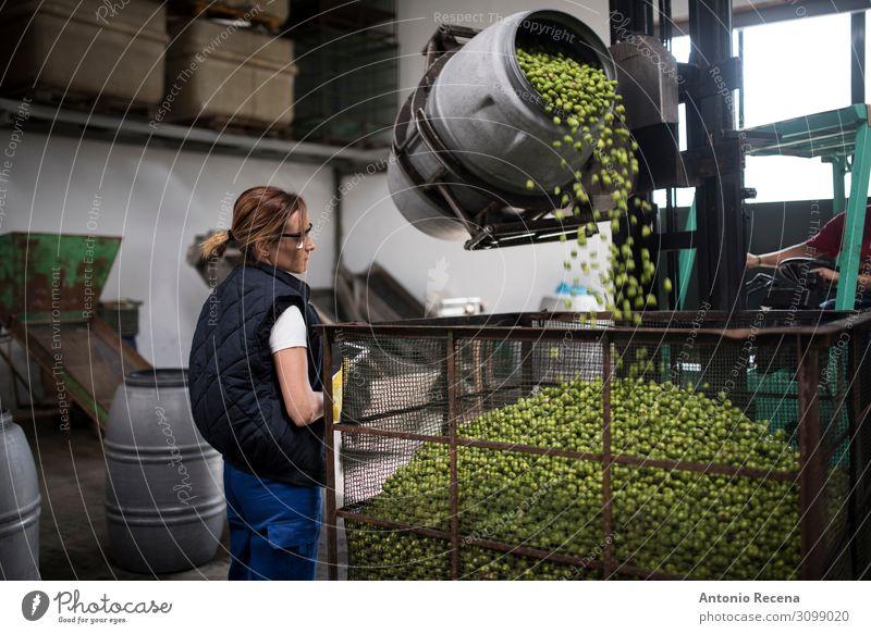 Olivenkontrolle Frucht Arbeit & Erwerbstätigkeit Beruf Arbeitsplatz Fabrik Industrie Business Unternehmen Mensch Frau Erwachsene Verkehr Fahrzeug Container