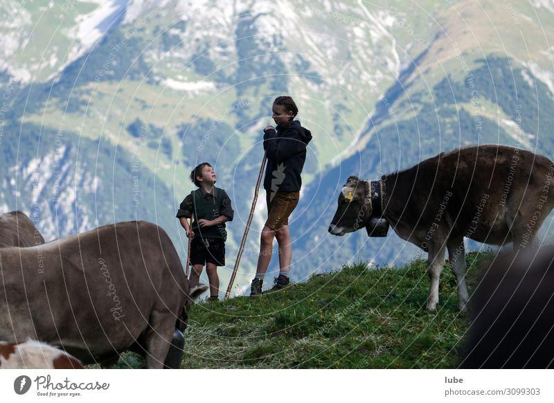 Hirtengespräche Landwirtschaft Forstwirtschaft Mädchen Junge 2 Mensch Umwelt Natur Landschaft Berge u. Gebirge Tier Nutztier Kuh Kommunizieren Fröhlichkeit