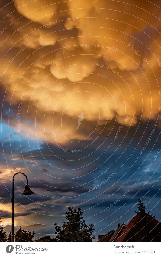 Am letzten Sonntag vor dem Weltuntergang Mecklenburg-Vorpommern Umwelt Natur Urelemente Luft Himmel Gewitterwolken Sonnenaufgang Sonnenuntergang Sonnenlicht