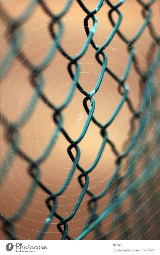 Geschichten vom Zaun (XXIV) Maschendraht Maschendrahtzaun Metall Linie Netzwerk Sicherheit Schutz Ausdauer standhaft Ordnungsliebe Langeweile Misstrauen