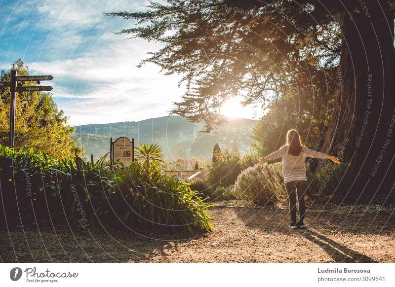 Atme tief durch Mensch feminin Junge Frau Jugendliche Erwachsene Leben Körper 1 18-30 Jahre Jugendkultur Pflanze Wolken Sonne Sonnenaufgang Sonnenuntergang
