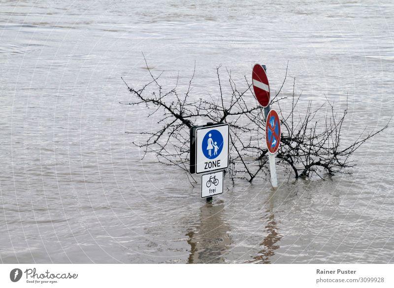 Klimawandel - Überschwemmte Fußgängerzone Natur Wasser schlechtes Wetter Sturm Fluss Rhein Zerstörung Überschwemmung überschwemmt untergehen Wassermassen