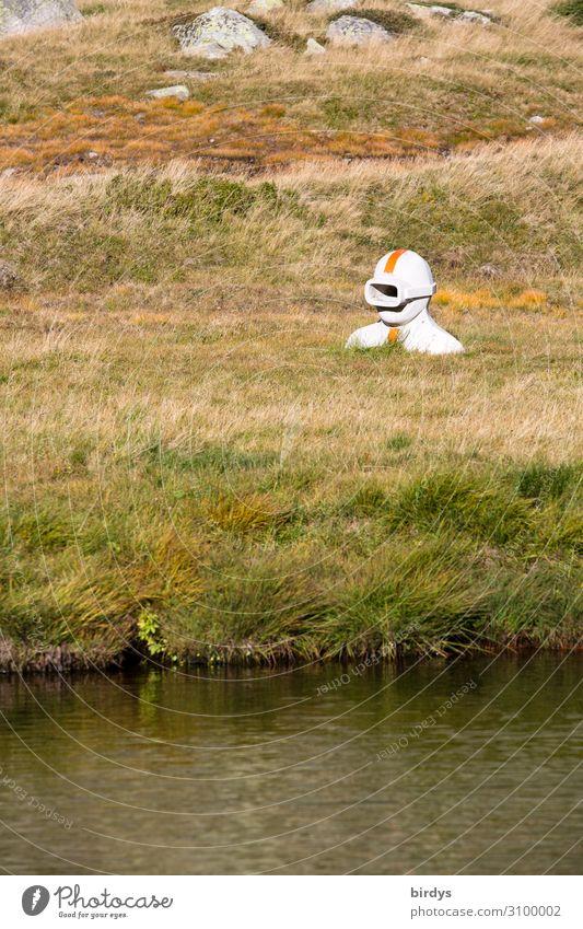 Im falschen Element ? androgyn Kopf 1 Mensch Kunst Skulptur Natur Erde Wasser Sommer Gras Felsen Alpen See Schweiz beobachten tauchen ästhetisch authentisch
