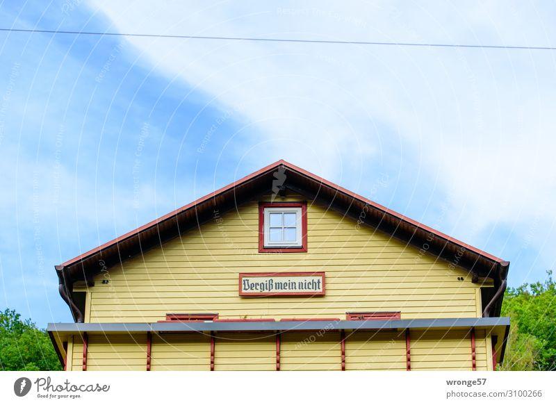 Vergiß mein nicht - Hoffnungsträger Haus Traumhaus Gebäude Fassade Balkon Fenster Dach historisch schön einzigartig retro Stadt blau gelb grün rot Erholung