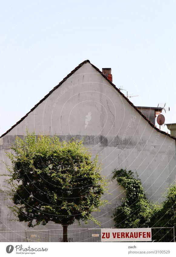 wertvoll | Immobilie Handel Baustelle Immobilienmarkt Gebäude Pflanze Baum Sträucher Dorf Kleinstadt Stadt Stadtzentrum Menschenleer Haus Ruine Mauer Wand