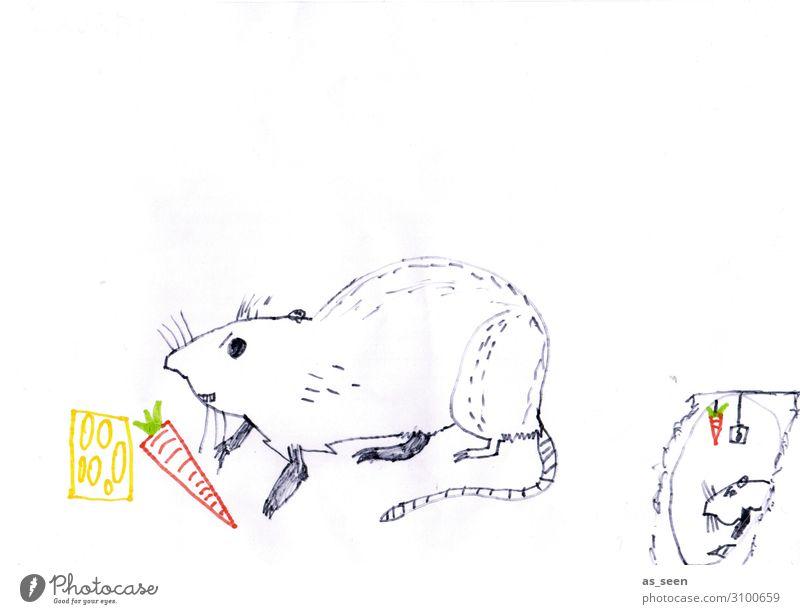 Ratte Möhre Käse Ernährung Tier Maus Nagetiere 2 Essen fangen authentisch listig gelb rot schwarz weiß Appetit & Hunger genießen Überleben Umwelt