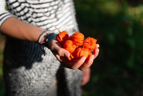 Herbst Kind Jugendliche ruhig 18-30 Jahre Erwachsene Traurigkeit feminin orange Zufriedenheit Ernährung 13-18 Jahre Kindheit genießen Hilfsbereitschaft Trauer