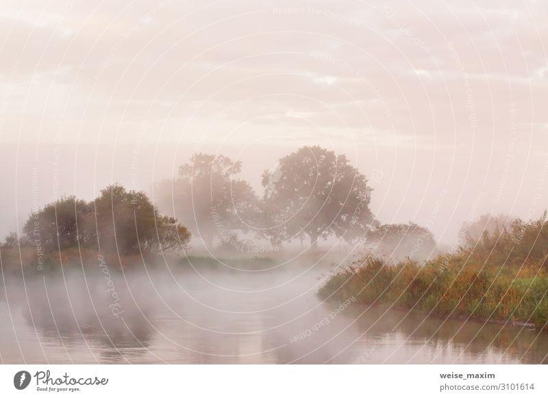 Nebliger Herbstmorgen am Fluss. Ferien & Urlaub & Reisen Tourismus Ausflug Abenteuer Ferne Sommer Umwelt Natur Landschaft Luft Wasser Himmel Wolken