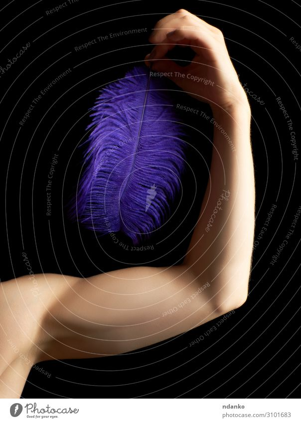 Die weibliche Hand ist am Ellenbogen gebeugt. Körper Haut Sport Mensch Frau Erwachsene Arme Fitness sportlich stark blau schwarz Kraft Feder Halt Licht Entwurf