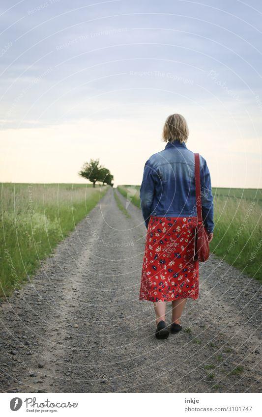 Sonntagsspaziergang Frau Mensch Natur Jugendliche Junge Frau Sommer Landschaft 18-30 Jahre Erwachsene Leben Herbst Umwelt Frühling Wege & Pfade Wiese gehen