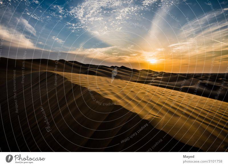 Sanddünen Kunst Gemälde Abu Dhabi Dubai Al Ain Wüste Düne Kontrast Vereinigte Arabische Emirate Gold Freundschaft Interesse Abenteuer Farbfoto mehrfarbig
