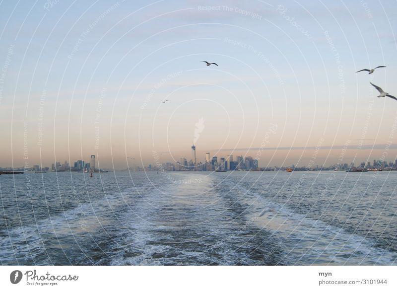 Skyline von Manhattan, Queens und New Jersey mit Möven in der Dämmerung New York City Hudson River Möwe möwen Mövenvögel USA Staten Island Ferry staten island