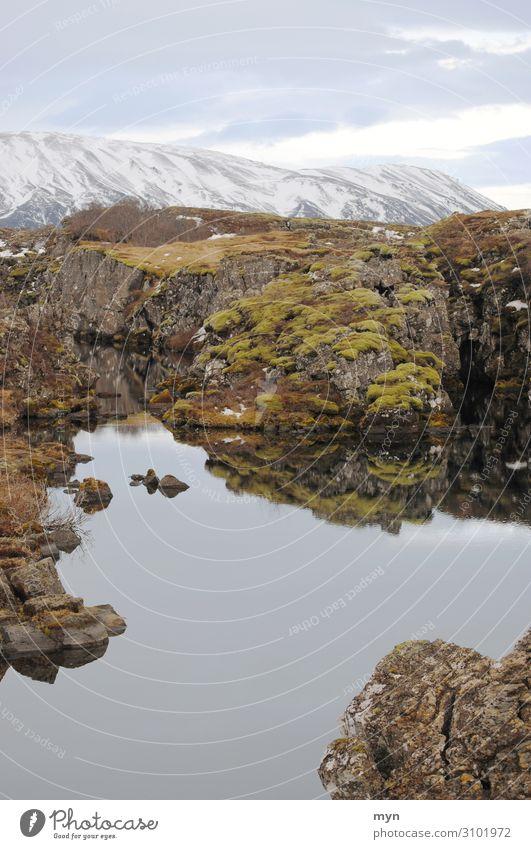 Landschaft in Island / Thingvellir-Nationalpark See Fluss Winter Gletscher Wasser Himmel Wolken Umwelt dramatisch Kontinente Bach Europa Menschenleer Moos