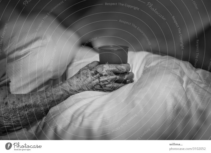 Hand einer alten Frau im Pflegeheim, mit Trinkbecher - gut umsorgt im Alter Senior Arme Hautfalten Pigmentfleck Finger Fürsorge Seniorenpflege Krankenhaus