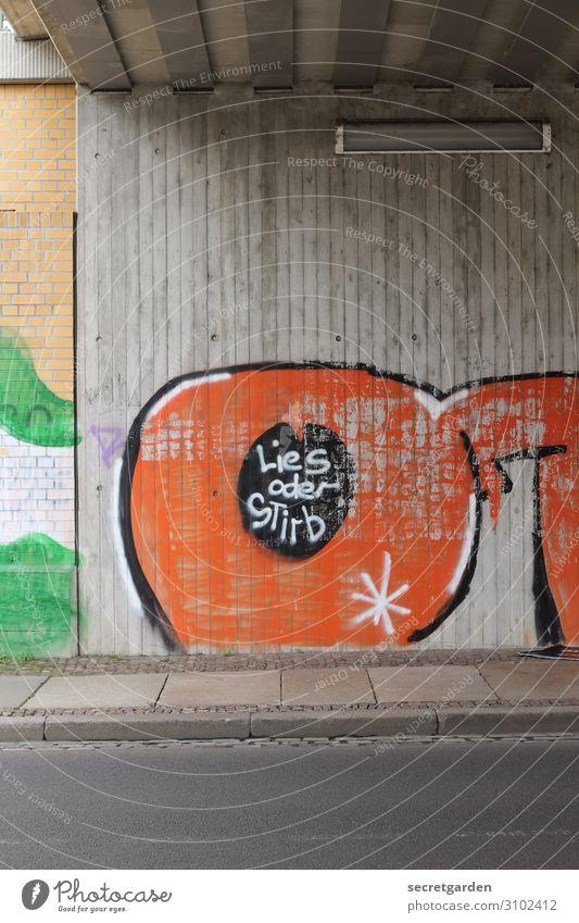 UT Halle | 2014.04 Tunnelblick mit Bildungsauftrag. Straße Graffiti Wand Kunst Mauer Tod orange braun Schriftzeichen Kommunizieren Kultur verrückt Hinweisschild