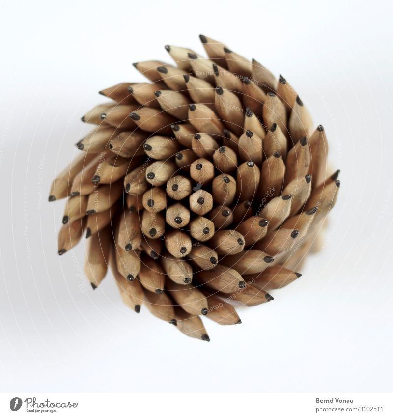 kreativstrudel Schreibstift Kreativität Büro Zeichenstift Bleistift Wasserwirbel Bewegung Spirale Graphit Holz Drehung oben Dynamik Richtung braun grau mehrere