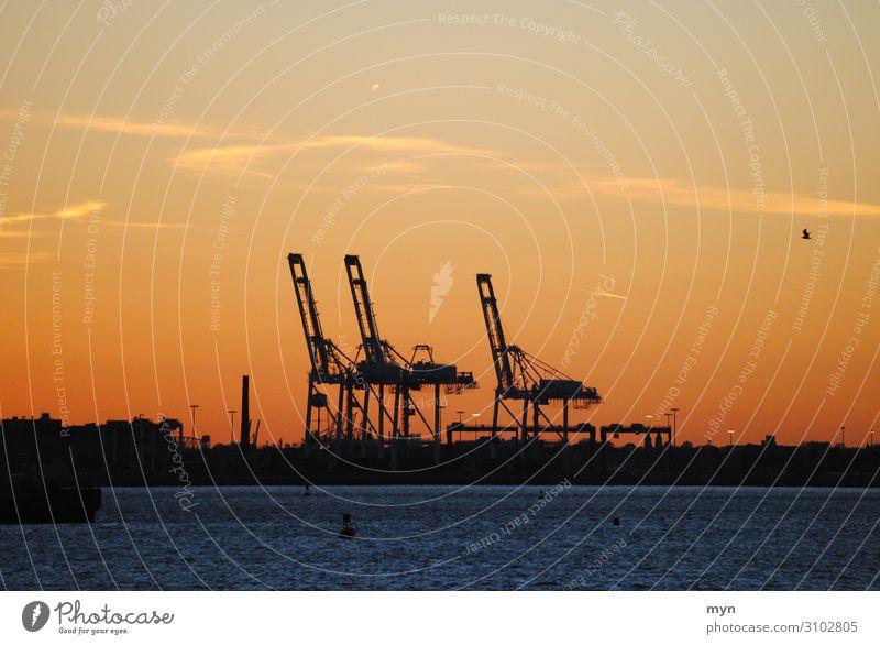 Hafenanlage im Sonnenuntergang in New York / New Jersey containerhafen New York City New York State USA Amerika Ferien & Urlaub & Reisen Silhouette Kontrast