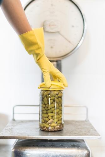 Schuppen Oliven Frucht Flasche Zufriedenheit Arbeit & Erwerbstätigkeit Fabrik Industrie Frau Erwachsene Arme Hand Handschuhe Paket alt dreckig Qualität