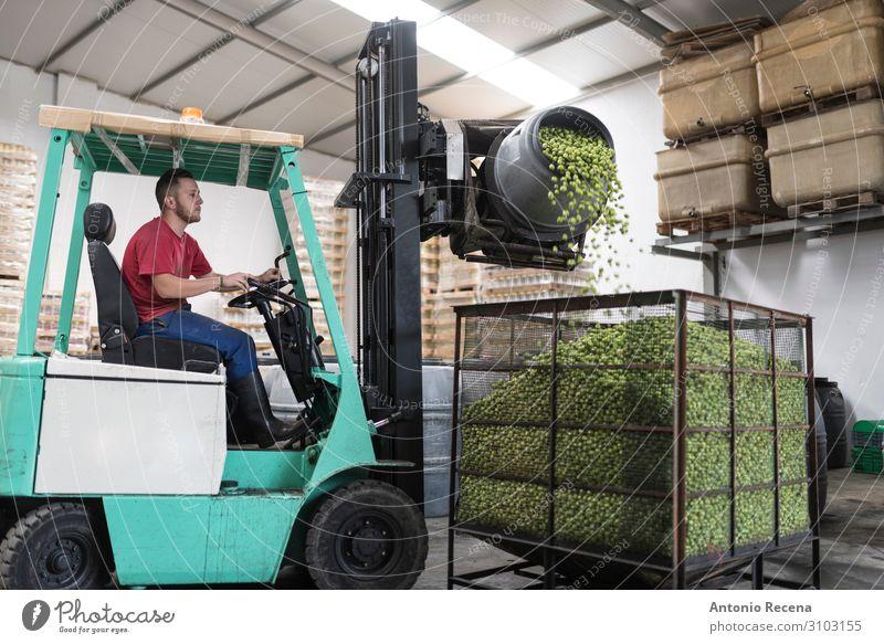 Fallende Oliven Frucht Arbeit & Erwerbstätigkeit Beruf Arbeitsplatz Fabrik Industrie Business Unternehmen Mann Erwachsene Verkehr Fahrzeug Container Verpackung
