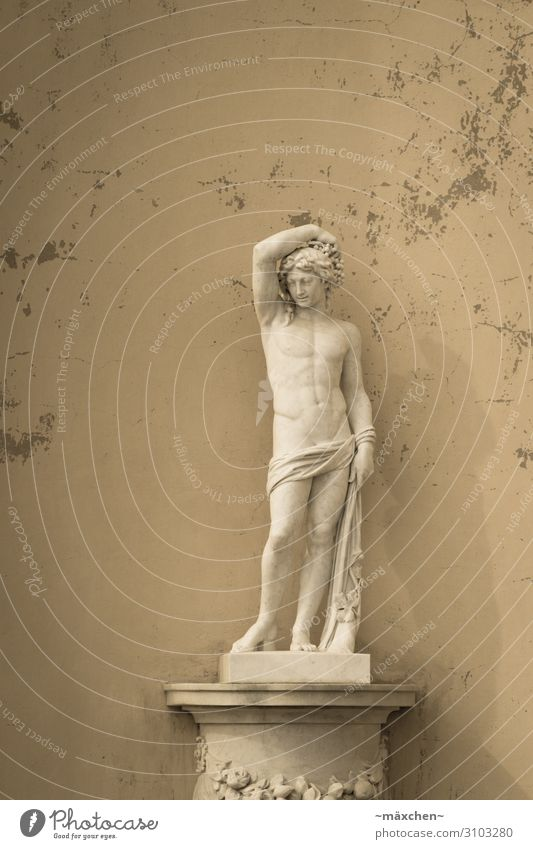 Posing Kunstwerk Skulptur ästhetisch schön Erotik Kultur Statue Bildhauerei Marmor Stein Wand Porträt Mensch Körperhaltung Podest Barock Farbfoto Außenaufnahme