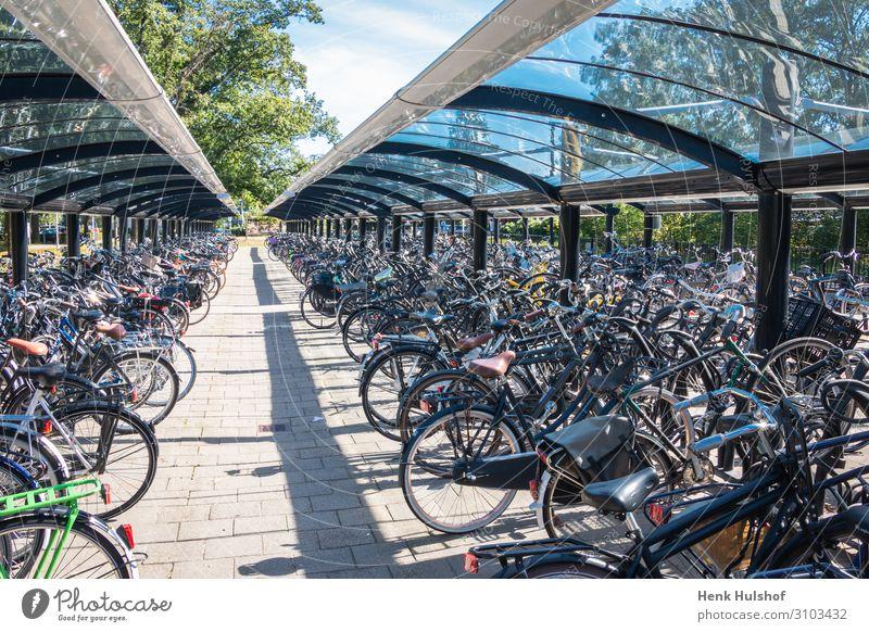 Typische holländische Szene eines Fahrradabstellplatzes Fahrradgarage Radfahren hell Großstadt Zyklus Abstellen von Fahrrädern Tag Ökologie wirkungsvoll Europa