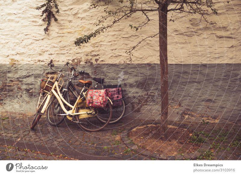 Zwei alte Fahrräder mit bunten Taschen an einer alten Mauer Freizeit & Hobby Radeln Ausflug Fahrradtour Sommer Sommerurlaub Fahrradfahren Erholung genießen