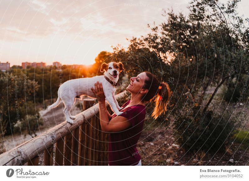 junge Frau und ihr Hund beobachten den Sonnenuntergang in einem Park. Lifestyle Freude Glück schön Freizeit & Hobby Sommer feminin Junge Frau Jugendliche
