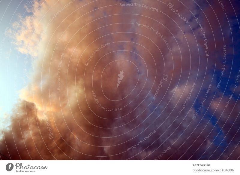 Wolken Himmel Himmel (Jenseits) Wetter Meteorologie Wolkenfeld Gewitter drohend dunkel Sommer Klima Klimawandel Kumulus Altokumulus Abend Dämmerung