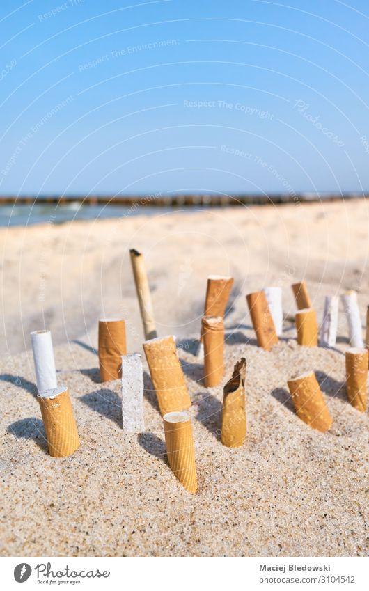 Nahaufnahme von Zigarettenkippen, die im Sand stecken. Lifestyle Ferien & Urlaub & Reisen Tourismus Strand Meer Umwelt Natur Himmel Horizont Küste Rauch dreckig