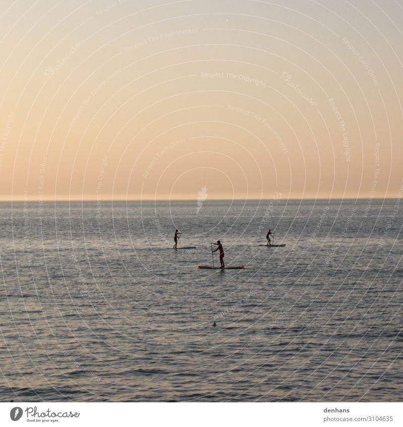 Drei Stand up Paddler auf dem Meer Stand up Paddling SUP Sommer Sommerurlaub Wassersport board Paddel lernen Mensch Junger Mann Jugendliche 3 Natur Himmel