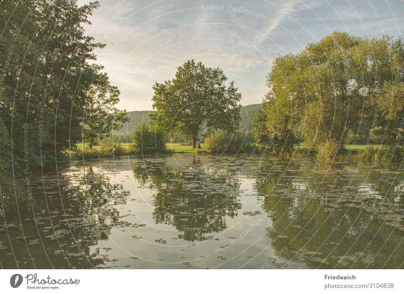 Spiegelung am See Ausflug Fahrradfahren Joggen Natur Landschaft Wasser Himmel Sommer Baum Teich entdecken Erholung gehen genießen laufen Blick träumen natürlich