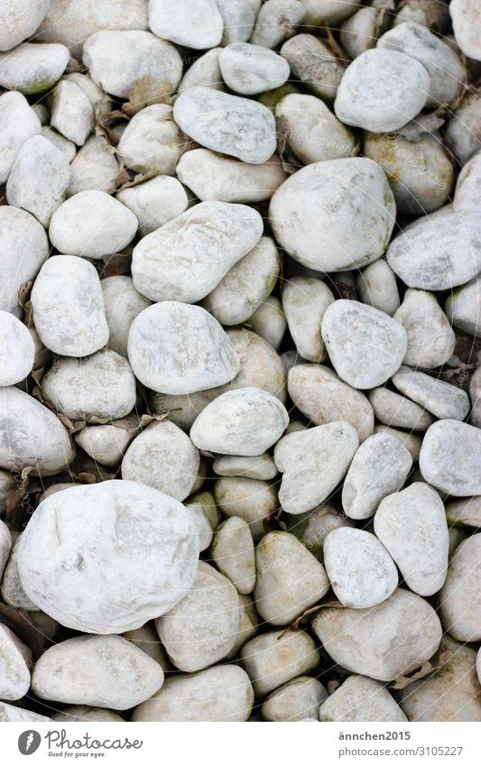 Steine... weiß Meer Strand Schwimmbad Natur finden Sammlung ansammeln Hintergrundbild Außenaufnahme