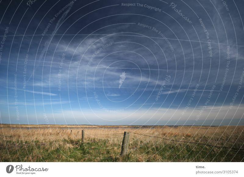 so weit das Auge reicht Himmel Natur schön Landschaft Wolken Einsamkeit ruhig Ferne Leben Umwelt Wiese Bewegung Zeit Stimmung Horizont Kraft