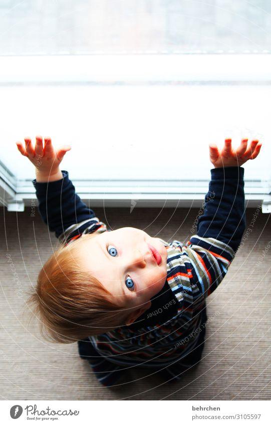 fingerspitzengefühl | nachdem der fensterputzer da war Baby Kleinkind Junge Eltern Erwachsene Familie & Verwandtschaft Kindheit Körper Haut Kopf