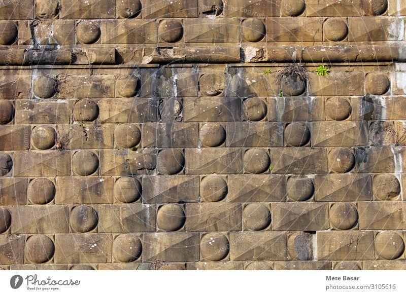 Festungswanddetail aus Florenz, Italien. Europa Burg oder Schloss Architektur Mauer Wand Wahrzeichen Stein alt ästhetisch nachhaltig stark Stadt braun Ehre
