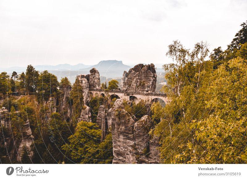 Sächsische Schweiz Bastei Ferien & Urlaub & Reisen Tourismus Ausflug Ferne Freiheit Sightseeing Berge u. Gebirge wandern Architektur Natur Landschaft Baum