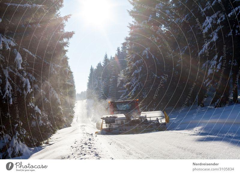 Pistenraupe im verschneiten Wald Ferien & Urlaub & Reisen Tourismus Winter Schnee Winterurlaub Wintersport Skipiste Dienstleistungsgewerbe Maschine