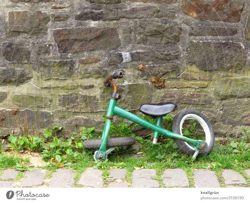 Kaputt grün Mauer braun Kindheit Vergänglichkeit kaputt Wandel & Veränderung Rost Mobilität Schrott