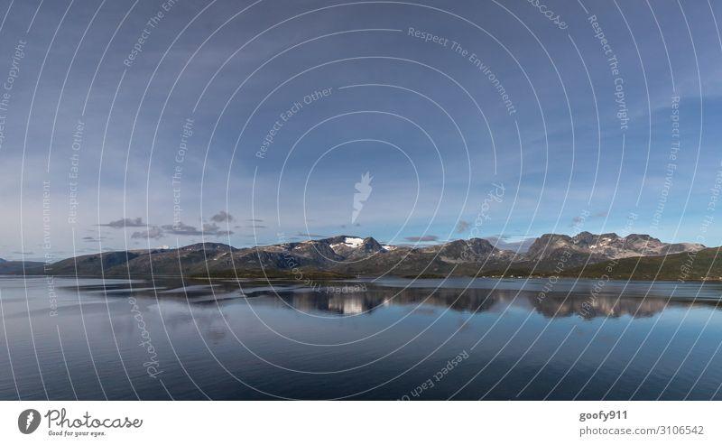 Schneebedeckter Gipfel in Norwegen Ferien & Urlaub & Reisen Tourismus Ausflug Abenteuer Ferne Freiheit Kreuzfahrt Expedition Natur Landschaft Wasser Himmel