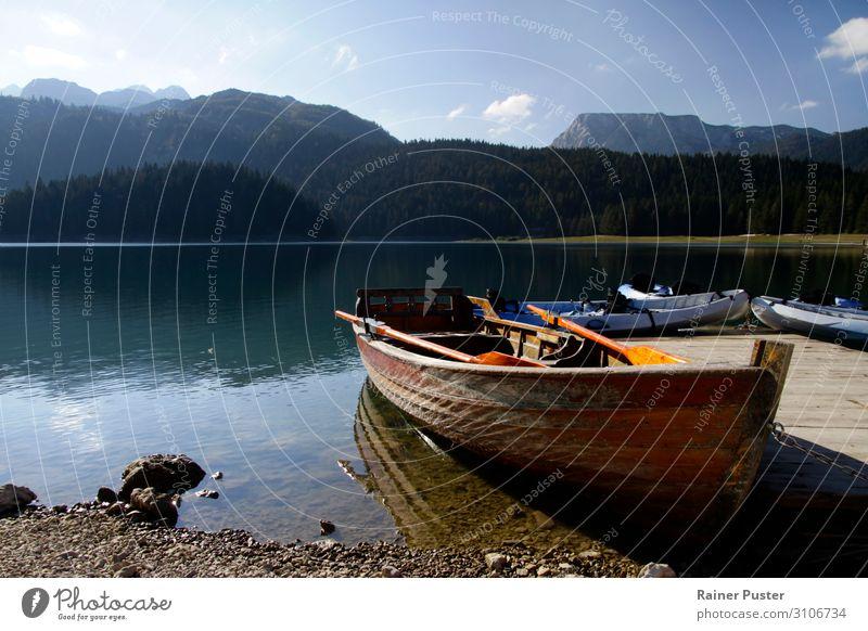 Ruderboot am Black Lake, Montenegro Rudern Abenteuer Freiheit Berge u. Gebirge Landschaft Schönes Wetter Wald Seeufer montenegro Balkan blau ruhig durmitor