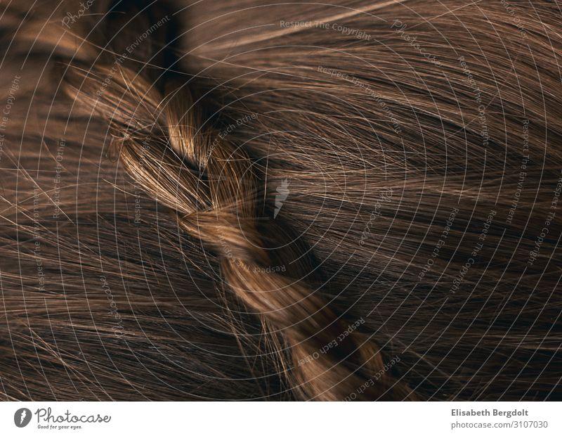 Nahaufnahme braune Haare mit gepflochtenem Zopf schön Körperpflege Haare & Frisuren Kopf brünett ästhetisch Farbfoto Innenaufnahme Menschenleer
